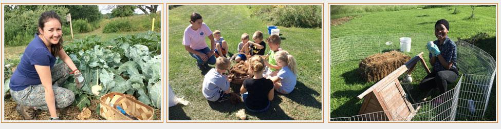 Volunteer Opportunities at Bluebird Trail Farm