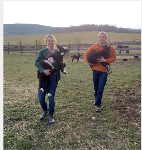 Volunteers on Bluebird Trail Farm