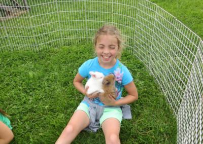 gallery-baby-bunnies