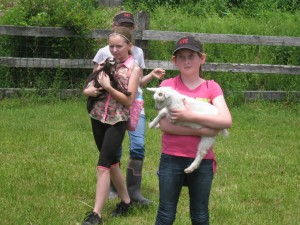 girls-w-lambs